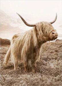 Golden Highland Cattle van Antonije Lazovic