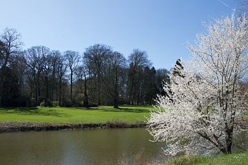 Het is lente in Meise von Kris Gevaert