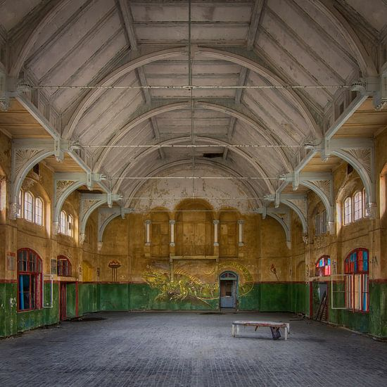 The Gym van Truus Nijland