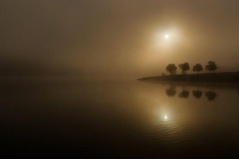 Reflet van Romain Dreux