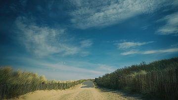 Dune road (16:9) sur Lex Schulte
