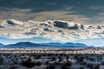 Mojave-Wüste -3 von Keesnan Dogger Fotografie