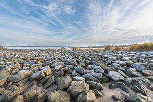 """Uiterwaarden rivier ' De Waal"""" van Wim Mourits"""