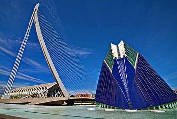 Het Calatrava park in Valencia  van Wim Aalbers