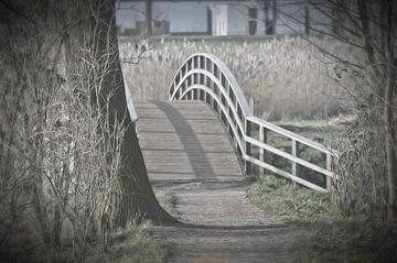 voetgangers en fietsers brug in het bos von Pascal Engelbarts