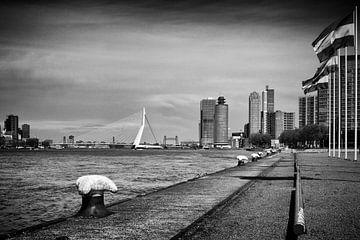 Wereldhavenstad Rotterdam van Rick Van der Poorten