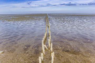 Houten paaltjes op het wad in Friesland van Marc Venema