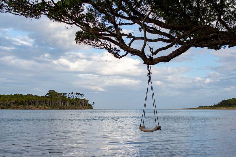 Tahakopa river swing van Ton de Koning