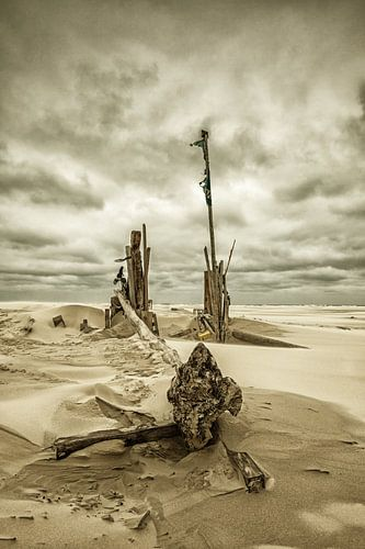 Beach Debris van