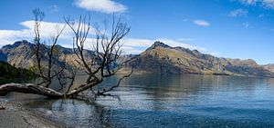Lake Wakatipu van Ton de Koning