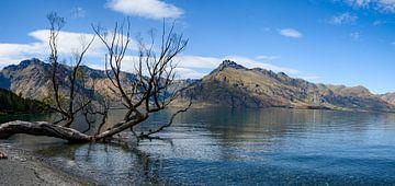Wakatipu-See von Ton de Koning