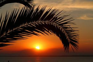 Sun dowm