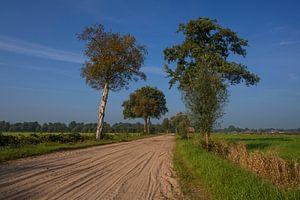 Landschap bij Okkenbroek