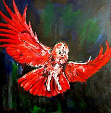 Little owl van Eberhard Schmidt-Dranske