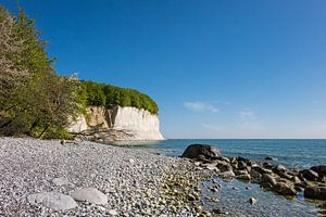 Chalk cliff on shore of the Baltic Sea