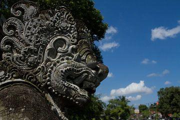 Bali Beelden  van Leanne lovink