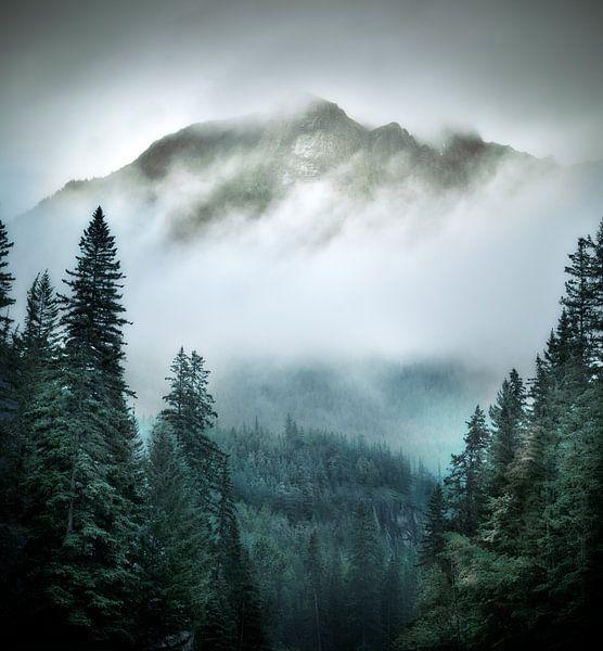 Mountain Greenery van Kees van Dongen