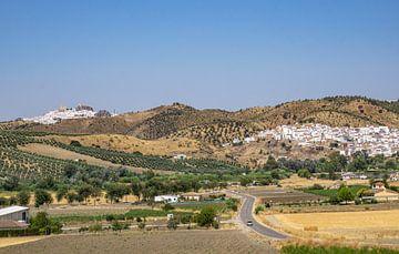 Voyage en voiture entre les villages blancs d'Andalousie sur Reis Genie