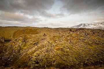 Isländische Landschaft mit Moos von Marcel Alsemgeest