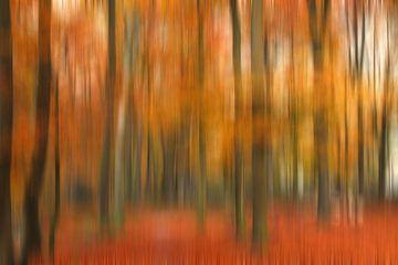 Herfst bos Abstract van Jessica Berendsen