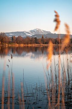 Spiegelung des  Sulzberger Sees mit dem Grünten  zum Abend von Leo Schindzielorz