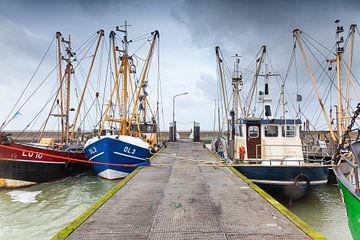 Viskotters in de Waddenzee haven van Lauwersoog sur