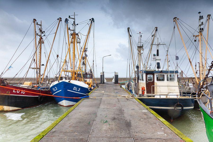 Viskotters in de Waddenzee haven van Lauwersoog