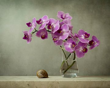 Schilderachtige orchidee van Joske Kempink
