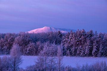 Sunrise @ Sånfjället N.P. von Marco Lodder