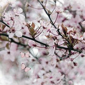 Roze bloesem vlinders van Nora Verhoef