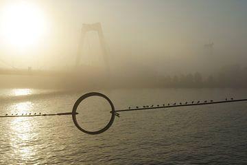 Willemsbrug in Rotterdam in de mist von Michel van Kooten