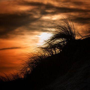 Sunrise Texel von Ruud Peters