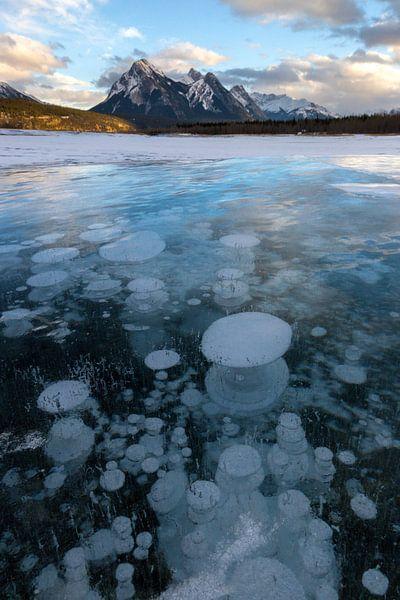 Methaanbubbels in Lake Abraham, Rocky Mountains van Jonathan Vandevoorde