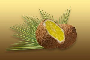 Kokos-Zitrone