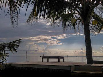 Zicht op de Balizee met palmboom in Lovina Beach van Daan Duvillier