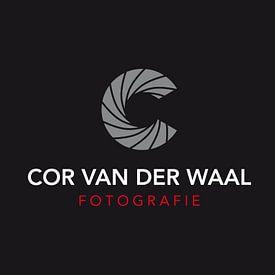 Fotografiecor .nl avatar