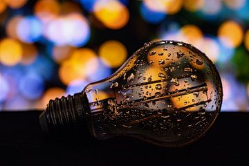 Eureka! Ledlamp van Nynke Altenburg
