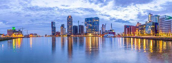 Rijnhaven Rotterdam van Rene Siebring