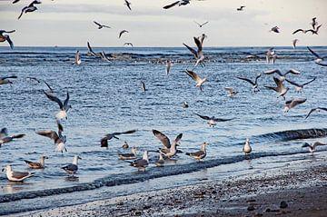 Katwijk aan Zee Serie - Blaues Meer von Wilma Overwijn