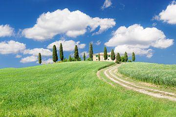 Farmhaus mit Zypressen, Val d'Orcia, Toskana, Italien von Markus Lange