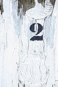 Detail van strandpaal 2 van