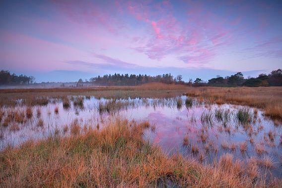 Silent autumn sunrise van Olha Rohulya