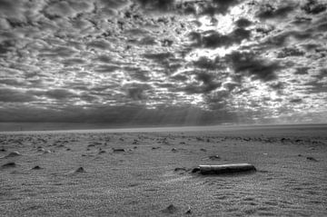 Texel strand von rik janse