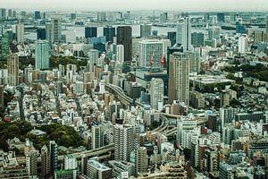 De Tokio (Tokyo) skyline met hoog contrast.