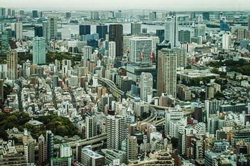 De Tokio (Tokyo) skyline met hoog contrast. van Claudio Duarte