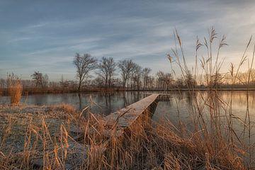 Steiger bij meer van Moetwil en van Dijk - Fotografie