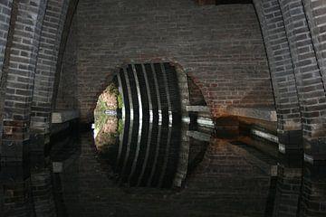 Binnendieze 's-Hertogenbosch von