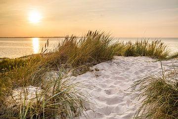 Schöner Sommerabend am Meer von Ursula Reins