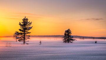 Zonsondergang in Noord Zweden van Adelheid Smitt