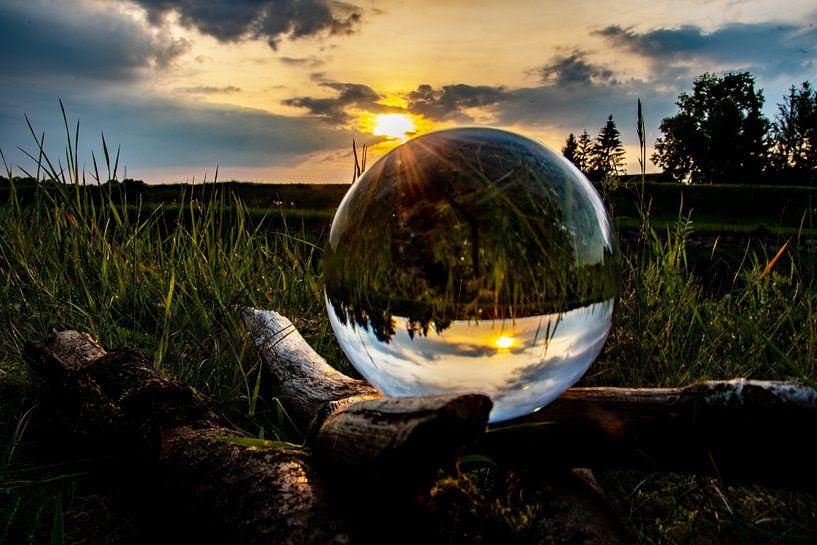 Magic of Nature van Patrick Boonstra